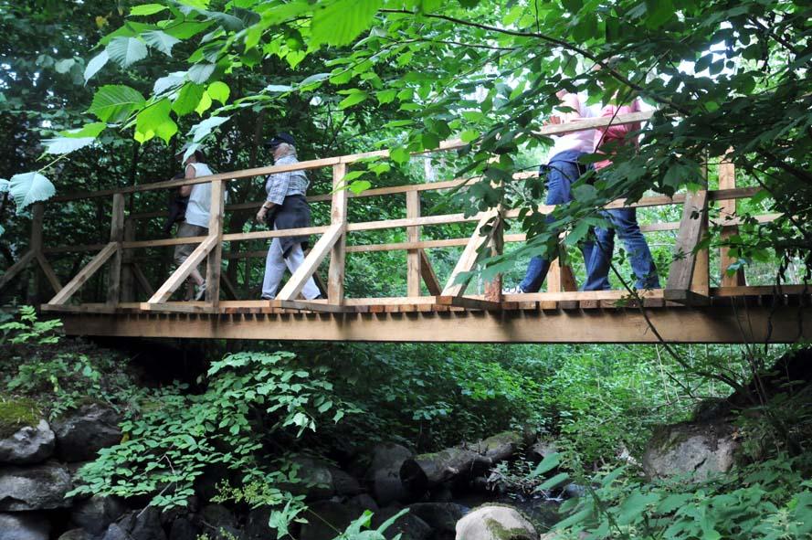 Gårdlösaleden, bro över sillavadsån